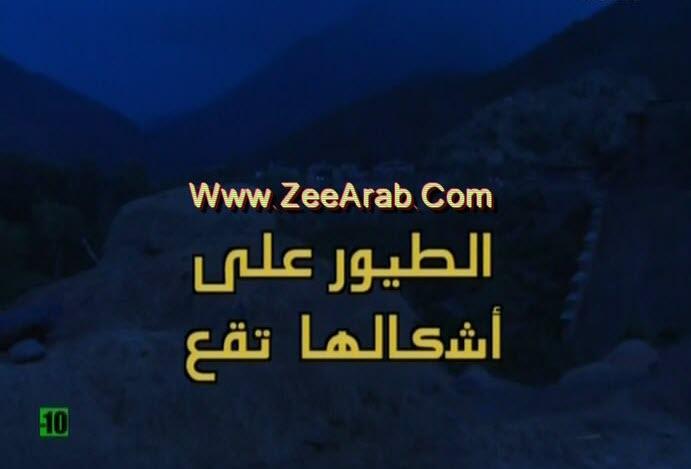 """حصريا الفيلم  المغربي """" الطيور على أشكالها تقع """" نسخة أصلية دي في دي"""